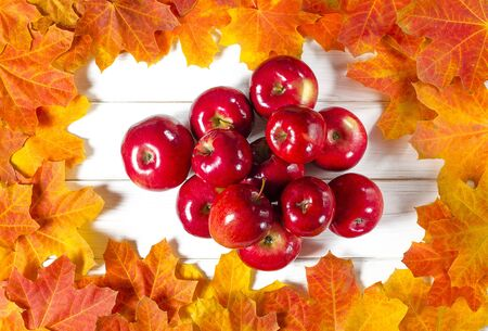 Yellow maple leaves and red juicy apples lie on a white wood background. Close-up 写真素材