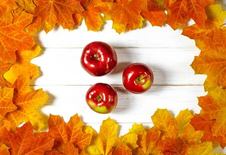 Yellow maple leaves and red juicy apples lie on a white wood background. Close-up Stockfoto - 131824901