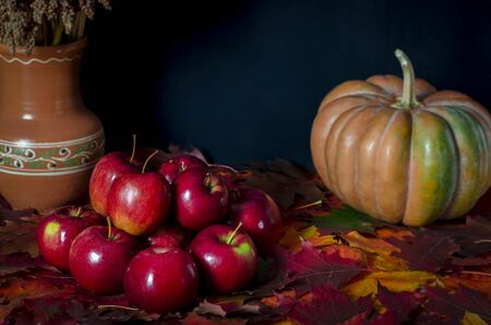 The autumn harvest of red juicy apples rests on the colorful autumn leaves next to the orange pumpkin. Close-up Stockfoto - 131824910