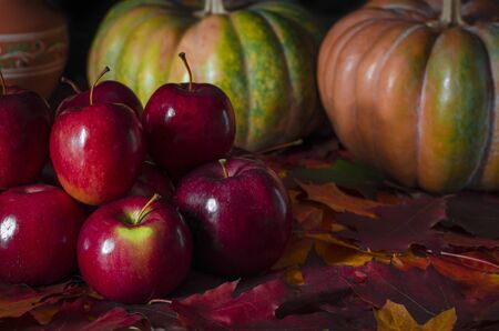 The autumn harvest of red juicy apples rests on the colorful autumn leaves next to the orange pumpkin. Close-up