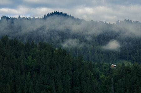 Morning fog in the mountains against the background of ancient snout forest and sky with clouds