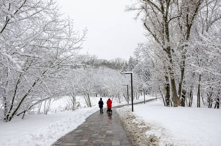 Two young women walk with a pram and a child in a winter snow park. winter