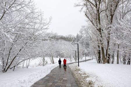 Zwei junge Frauen gehen mit einem Kinderwagen und einem Kind in einen Winterschneepark. Winter