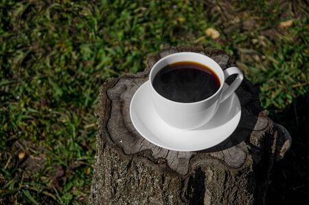 A white cup of coffee stands on a stump in an open-air garden. Top view