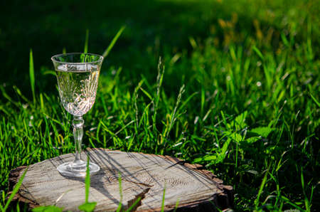 A crystal glass of white wine stands on a wooden stump in the green grass Stockfoto