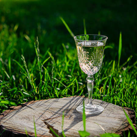A crystal glass of white wine stands on a wooden stump in the green grass