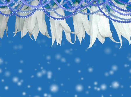 unilateral: White flowers with beads on a blue background