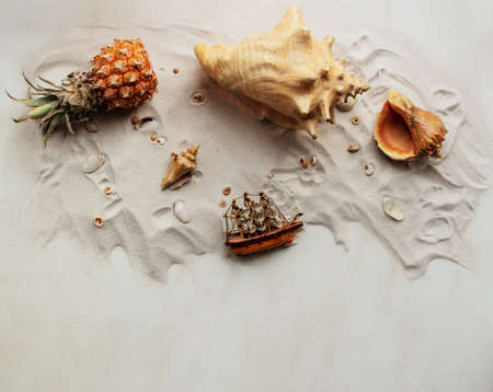 Summer advertising marine concept on a beige background. Background with seashells different shape and type in the sand. Zdjęcie Seryjne