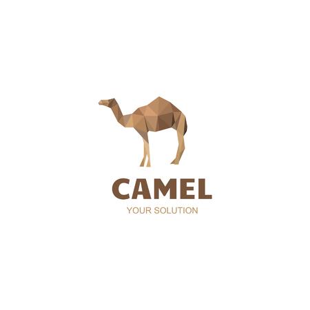 convoy: camel company
