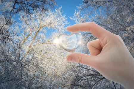 冬の木の背景に手のガラスの心。 写真素材