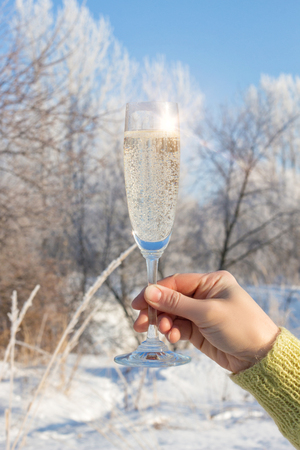 Glass of champagne on a background of winter trees. Stock Photo