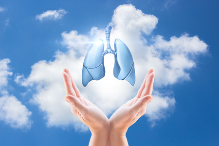 human hands: Hands holding human lungs on the background of the sky. Stock Photo