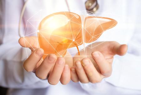 Support healthy liver concept design banner .
