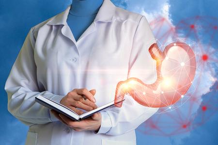 De arts verken het concept van het menselijk maagconcept.