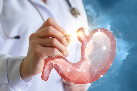 Doctor showing a stomach concept art design . 스톡 콘텐츠