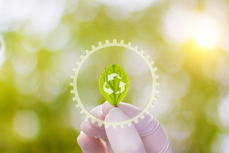 A sample of the plant in the hand on a blurred background . Stock Photo