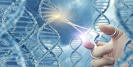 Doctor tocó abrazadera médica una molécula de ADN. Foto de archivo - 80416163