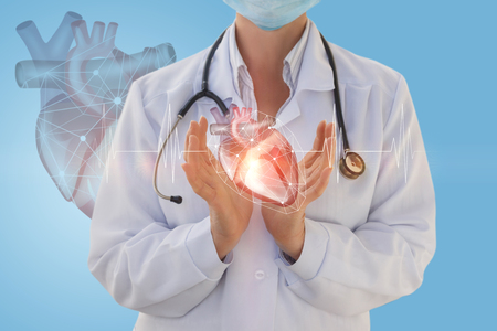 Physician cardiologist shows a human heart on a blue background.