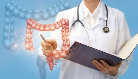 Doctor shows colon on a blue background. Stock Photo