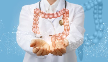 Doctor supports the colon of a person . Concept digestive system. Archivio Fotografico