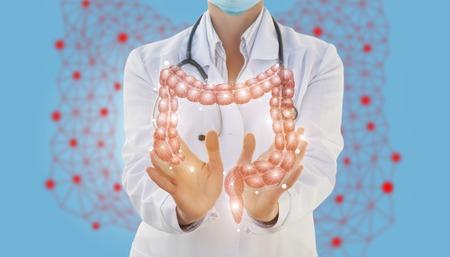 Un travailleur médical montre l'intestin. Le concept de traitement du système digestif. Banque d'images