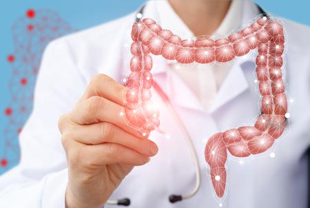 Doctor draws the structure of the colon on a virtual screen. Foto de archivo