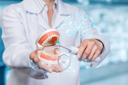 A closeup of a dentist holding an opened artificial jaw model and cleaning the teeth with electric toothbrush at the blurred dentist office background. The concept of innovative stomatology quality. Banco de Imagens