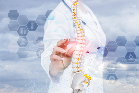 A closeup of doctor with stethoscope operating with artificial spine model with pelvis unit of human skeleton with comb medical service structure at forehand. The concept of spine diseases treatment.