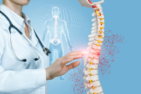 A closeup of doctor operating with artificial spine model with pelvis unit of human skeleton digital human figure background. The concept of spine diseases treatment.