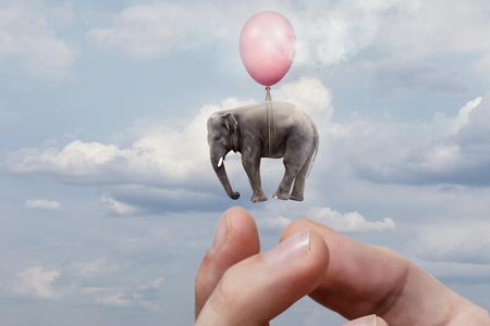 Il braccio sta lanciando l'elefante nel cielo. Il concetto di distribuire omaggi. Archivio Fotografico
