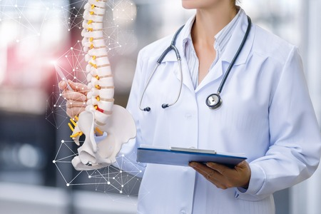 A medical worker shows the spine on blurred background.