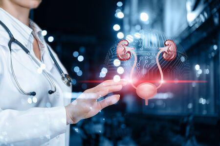 Der Arzt scannt das Harnsystem auf unscharfem Hintergrund.