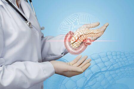 의사는 환자의 췌장을 스캔합니다.
