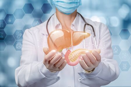 Doctor shows liver and pancreas on blurred background. Imagens