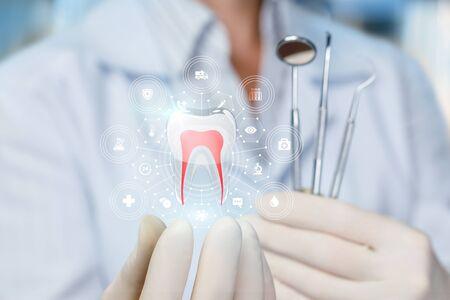 Il medico mostra il modello di un dente sano su sfondo sfocato.