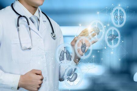 Het concept van het instellen van het mechanisme van interactie van de interne organen van de patiënt.