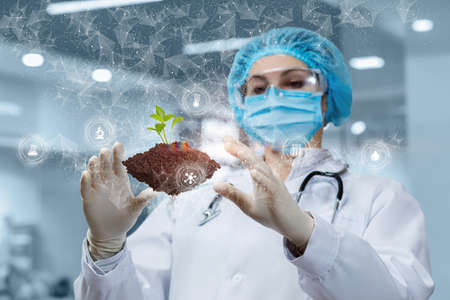 A laboratory assistant manipulates a sprout sample on a blurred background.