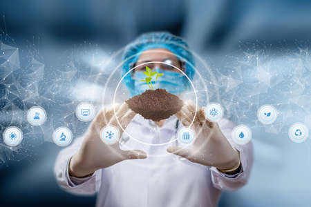 Laboratory research concept with plants. The doctor manipulates the sprout on a blurred background. Banco de Imagens