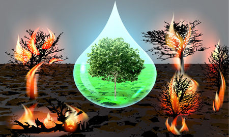 environmental damage: poster protection of forests from fires green tree in a water drop Illustration