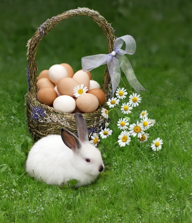 Easter basket and the Easter bunny Stock Photo - 17923191