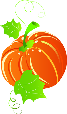 seed bed: pumpkin Illustration