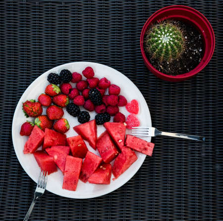 A white plate with slices of red watermelon and berries, two forks and a red flower pot with a cactus are on a black table. Summer still life with watermelon and berries. Blueberry and strawberry.
