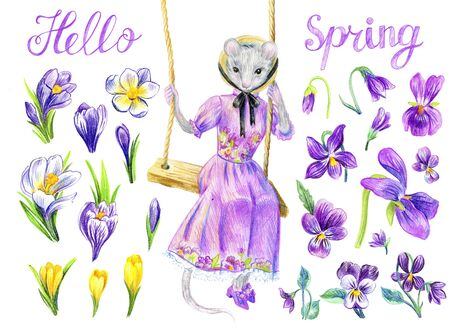 Mouse southern belle. Victorian fashion. Hello spring lettering. Floral set with crocuses and violets.