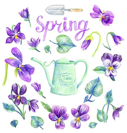 Garden set design. Purple violets. Watering can. Shovel. Isolated elements on a white background.