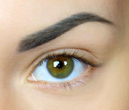 cejas: Ojos hermosos