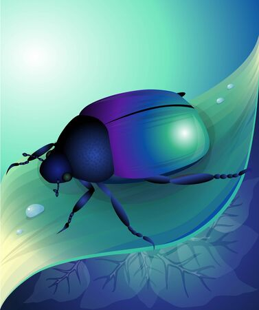 macro nature: Vector illustration of blue beetle on herb