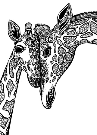 Vector graphic illustration with two giraffes in love