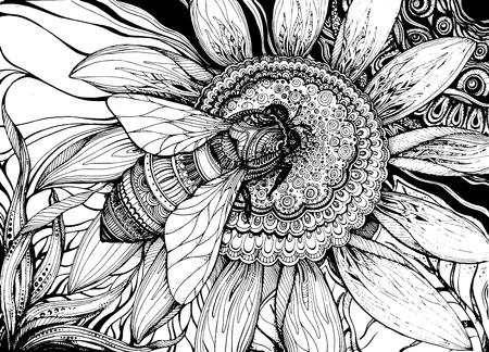 flower sketch: Beautiful vector background with graphic bee on flower with a lot of details