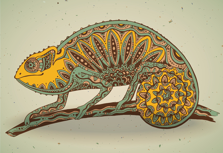 chameleon lizard: picture of colorful chameleon lizard in graphic style