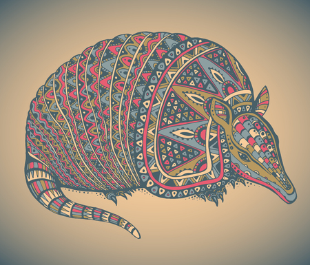 terrestrial mammal: Armadillo hand drawn vector illustration with a lot of details and colors
